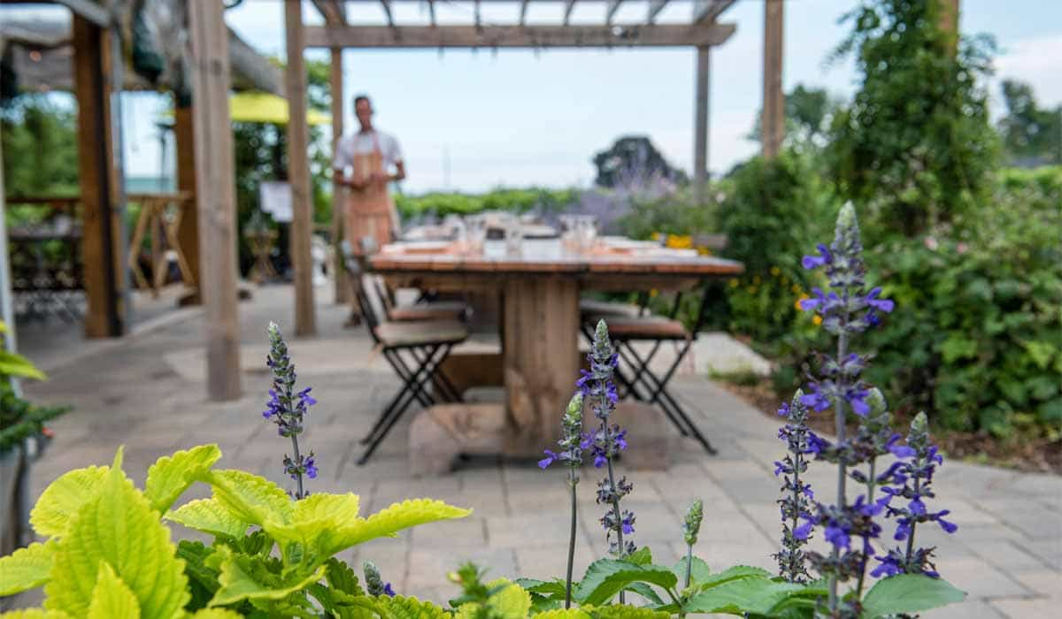 Al fresco dining at The Good Earth Bistro