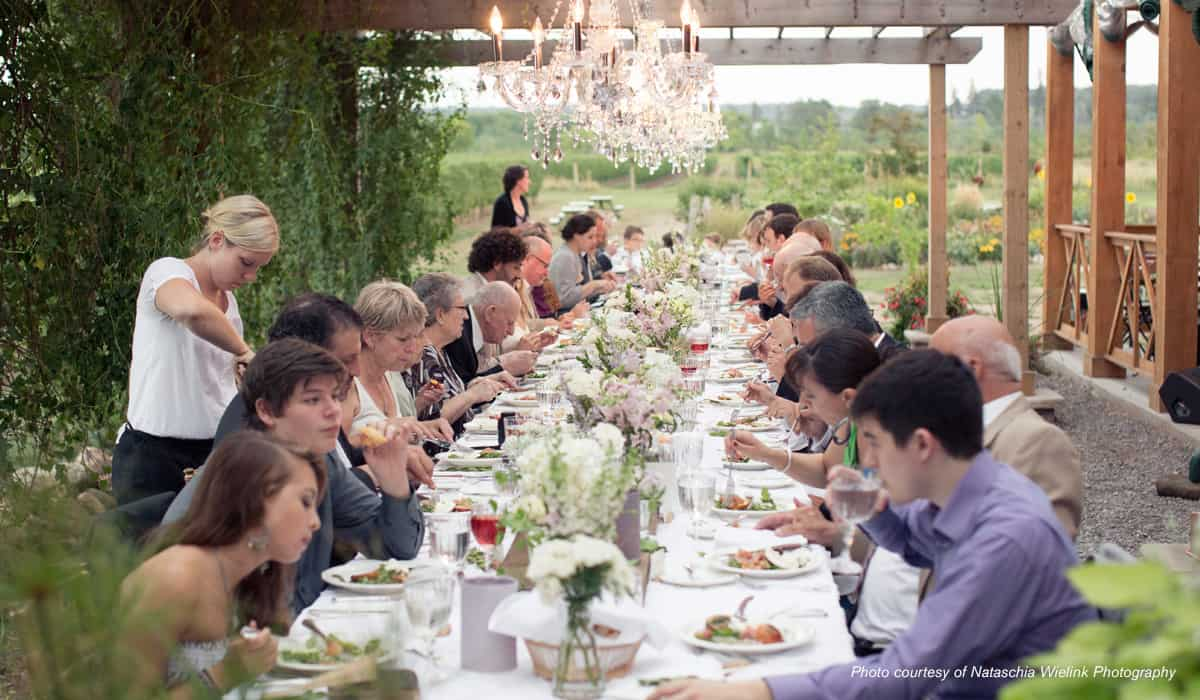 al fresco wedding in wine country